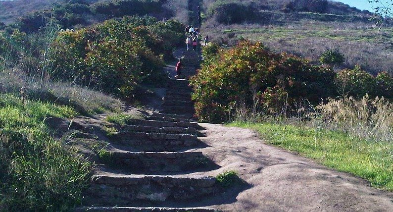 Elegant Hike The Hidden Staircases Of Los Angeles